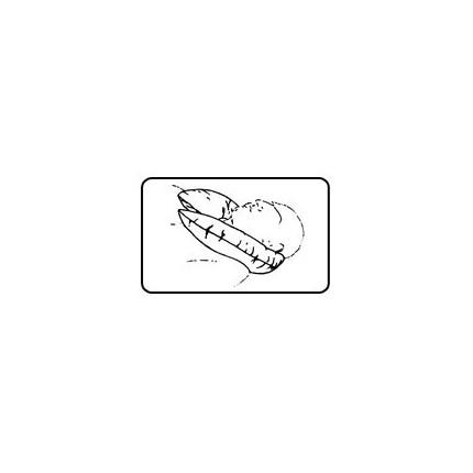 Colac deschis antidecubit pentru gat si ceafa Gyopar S4 diametru 48 cm