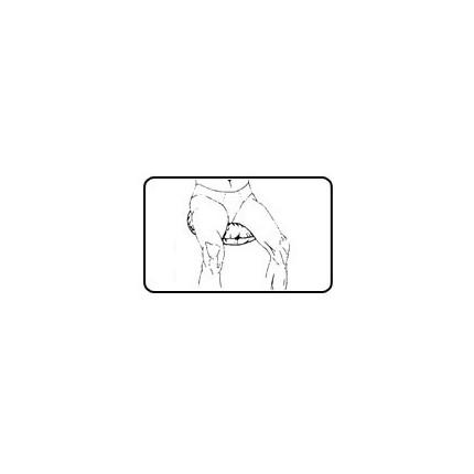 Colac antidecubit pentru sezut Gyopar S3 diametru 51 cm