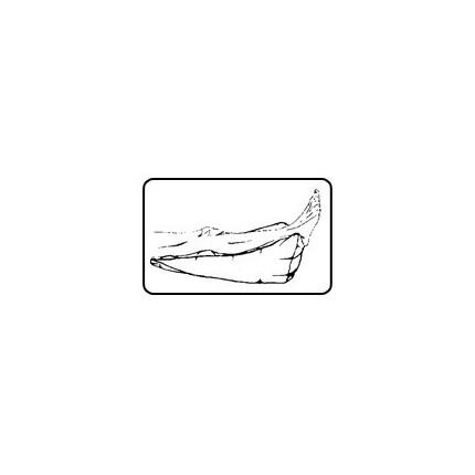 Perna rampa de sprijin picior Gyopar S22 76x27x30 cm